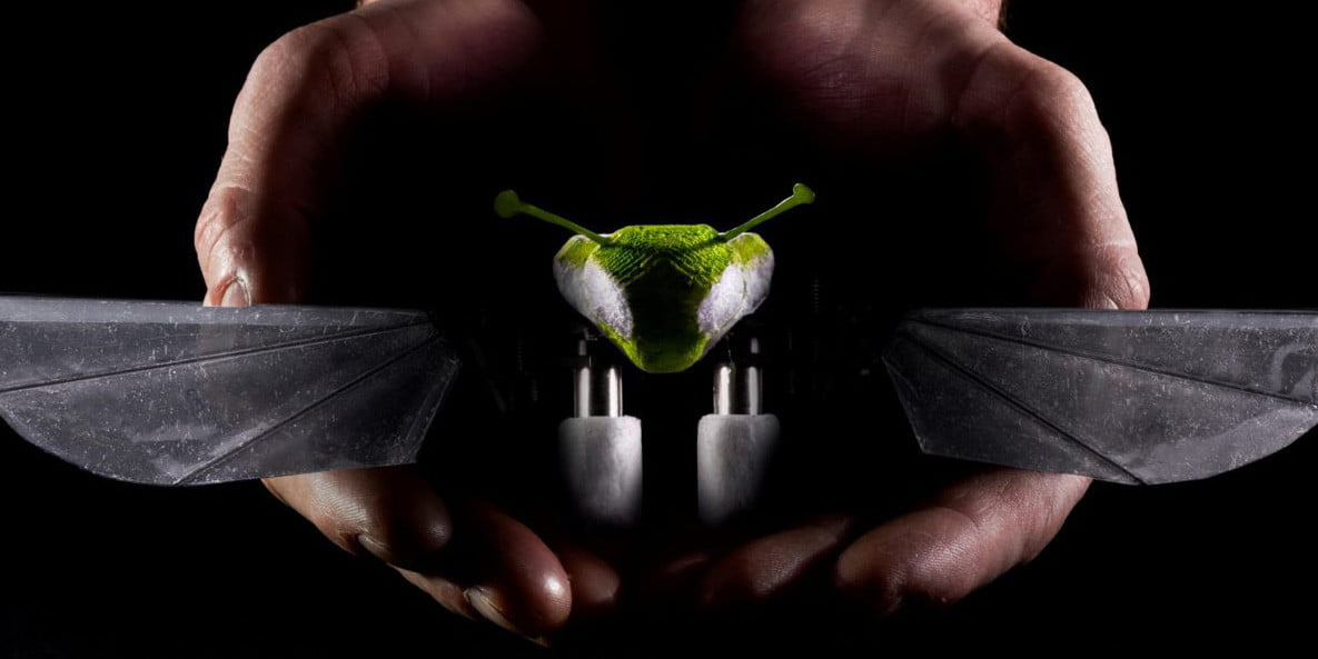 Awesome Tech You Can't Buy Yet: Insect drones and kinetic sculpture robots
