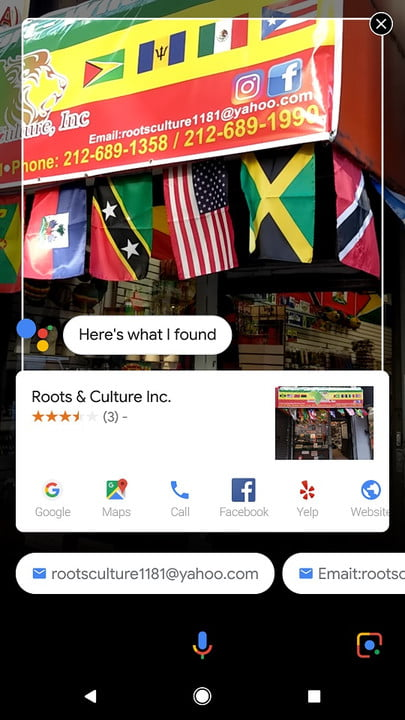 how to use google lens rootsandculture