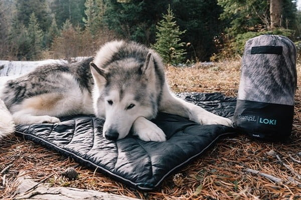 rumpl two person blanket 1