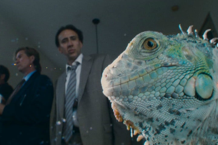 best new shows and movies to stream bad lieutenant