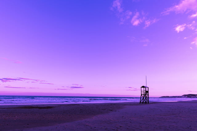 what are the biggest color trends in photography study suggests these bold hues shutterstock 783797293