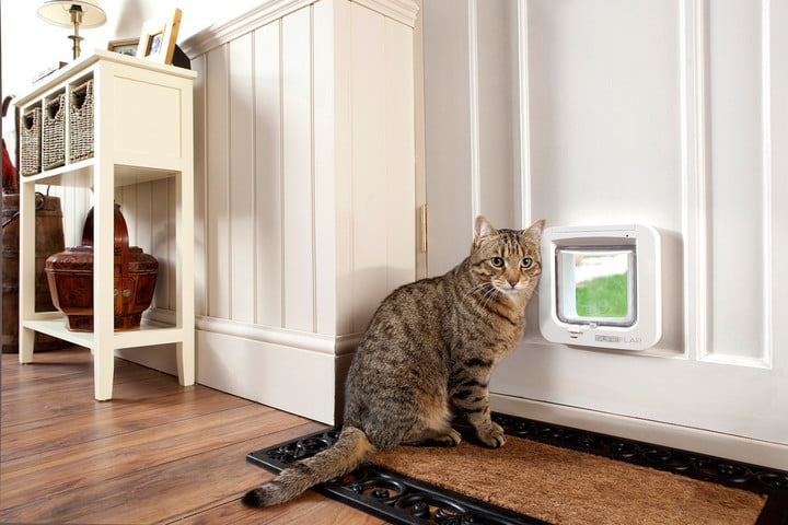 microchip pet door connect sureflap & Keep a Closer Eye On Tigger With This Smart Pet Door | Digital Trends