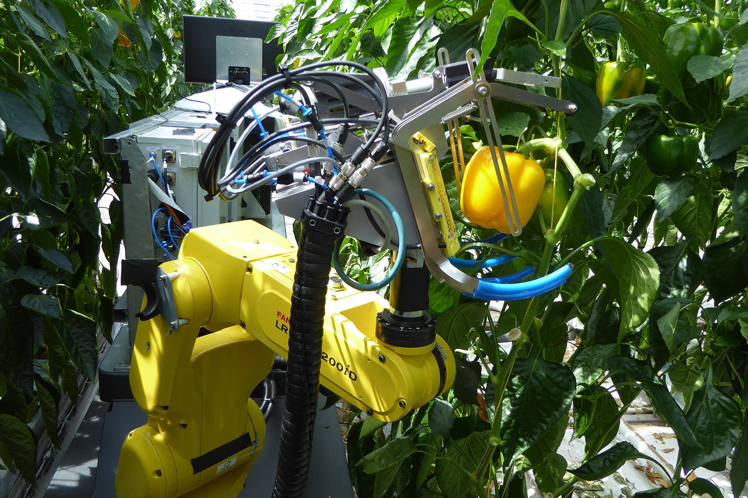 The future of farming is in robots' hands, and they're learning to use them