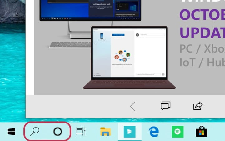 Microsoft could split up search and Cortana in the next Windows 10 release