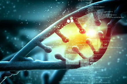 CRISPR gene therapy regulates hunger, staves off severe obesity in mice